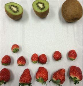 水果類測試