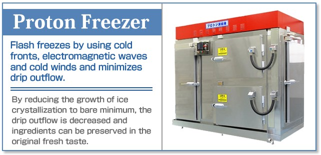 flash freezer machine