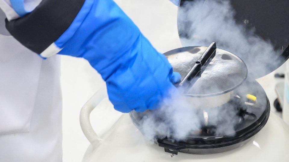 液態氮冷凍示意圖