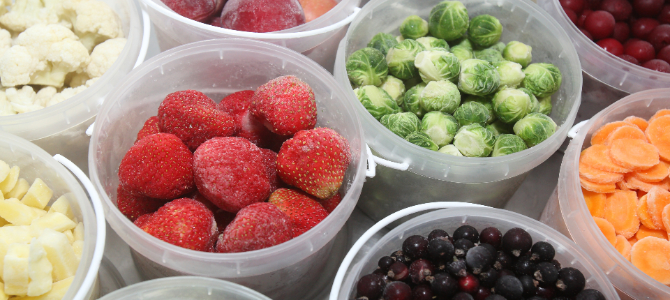 水果類急速冷凍測試報告