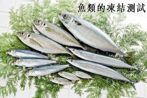 魚類的凍結測試