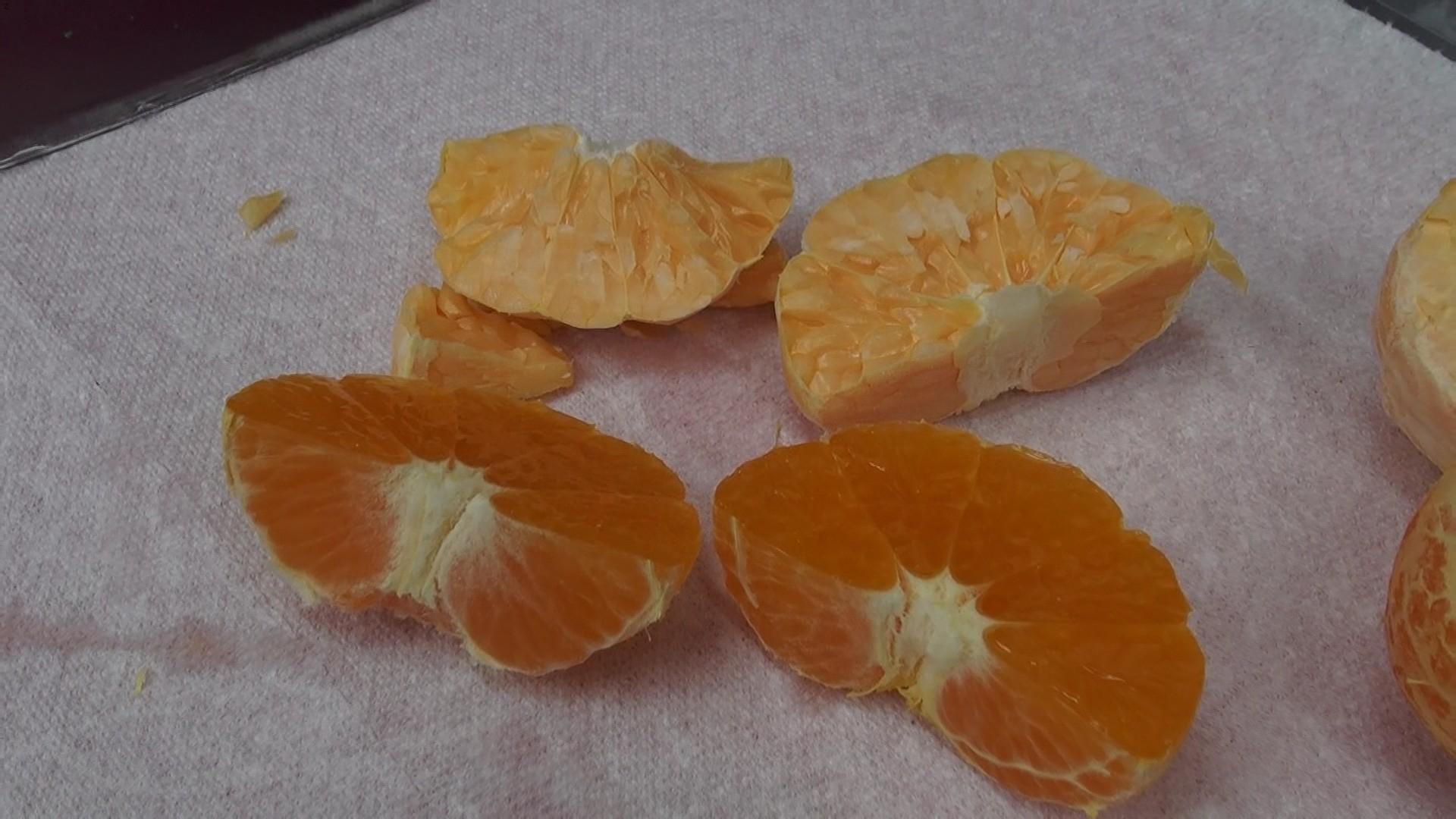 橘子外觀比較2
