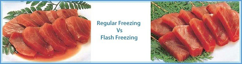 image of fish frozen by a regular freezer and a flash freeze machine