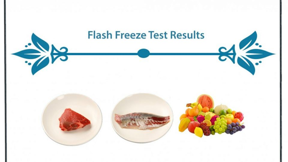 Flash Freeze Test Results