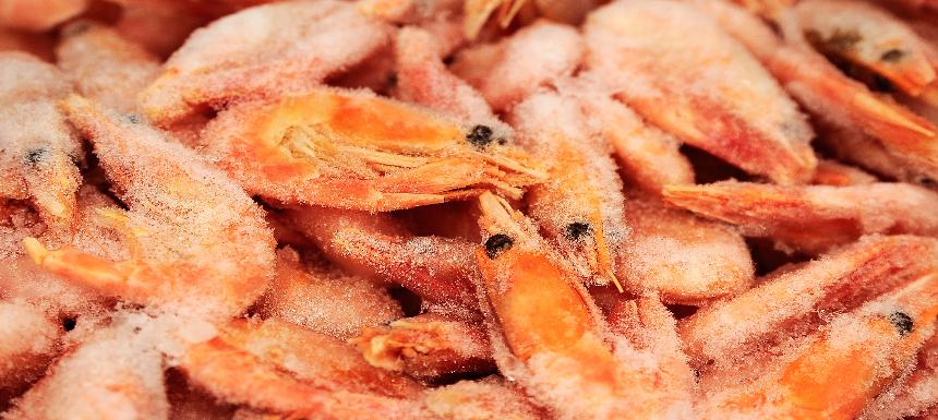 冷凍蝦類示意圖