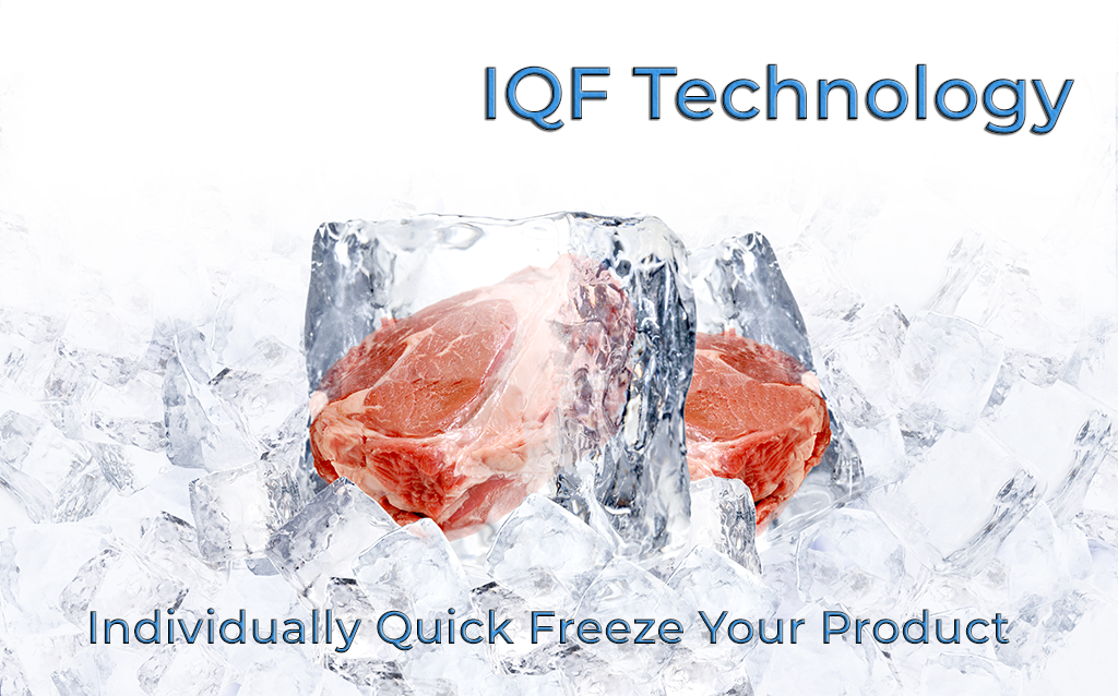 IQF Banner