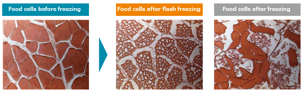 Flash Freezing Food Cells