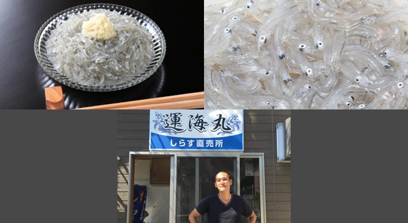 Japanese Whitebait