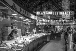 Blast Freezer Fish Market