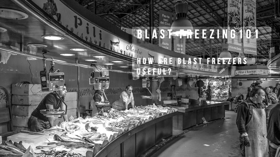 Blast Freezer Useful Market